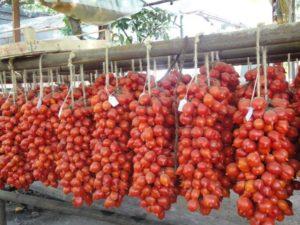 il pomodorino del piennolo del vesuvio dop