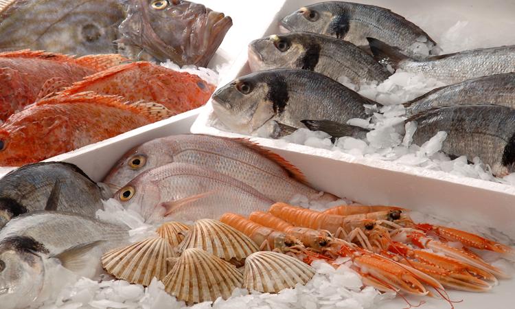 ristorante di pesce ad agropoli